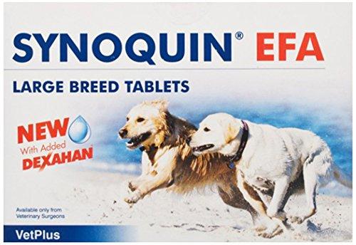 Vetplus Synoquin EFA - Suplemento para perros razas grandes, 120 Comprimidos ✅