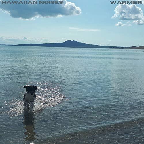 Hawaiian Noises