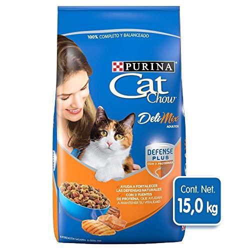 Comida Para Gato Cuál Es La Mejor Del 2021 Sincable