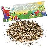 Wilde Weide Wildblumensamen von OwnGrown, 100g Premium Wildblumen Samen für Bienen und Insekten, Wildblumenmischung für bunte Blumen Wiese, Saatgut Mischung ein- und mehrjährig