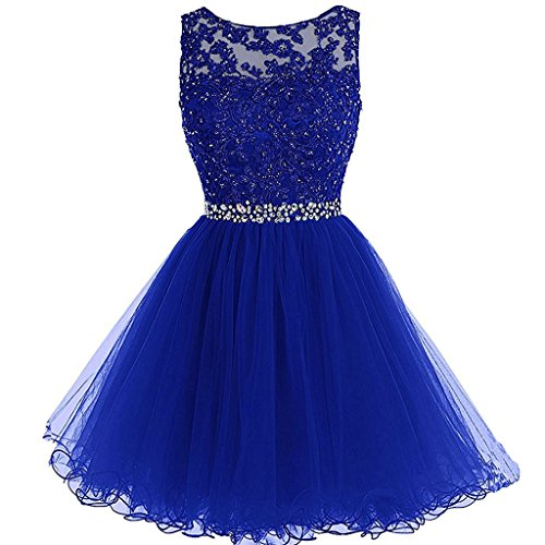 Aiyi Sheer Bateau Beaded Lace Tulle Short Corset Prom Homecoming Dresses Royal Blue US 6 (Apparel)
