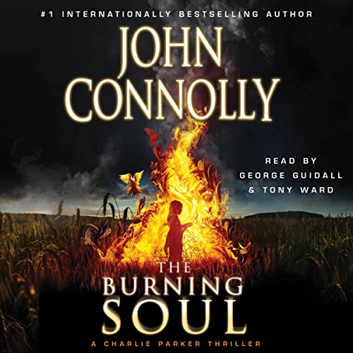 The Burning Soul cover art