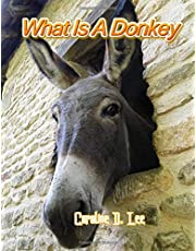 What Is A Donkey: Animal fact for girl age 1-10 Animal fact for boy age 1-10 facts about the Donkey