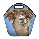 Divertida llama de alpaca con bolsa de asas para el almuerzo con cabello desordenado salvaje Almuerzo de neopreno aislado Impermeable Picnic de viaje al aire libre Estuche de mano Bolsos