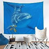 Bonita manta de pared con diseño de delfín, para niños, niñas, adolescentes, decoración de criaturas marinas, para colgar en la pared, playa, acuario, azul cielo, arte de pared, grande, 58 x 79