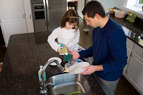 Better Life Natural Dish Soap, Lemon Mint Scent, 22 Ounces (Pack of 2), 24068