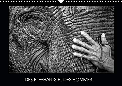 DES ÉLÉPHANTS ET DES HOMMES (Calendrier mural 2020 DIN A3 horizontal)