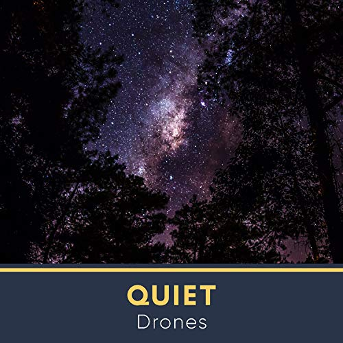 Quiet Drones, Vol. 1
