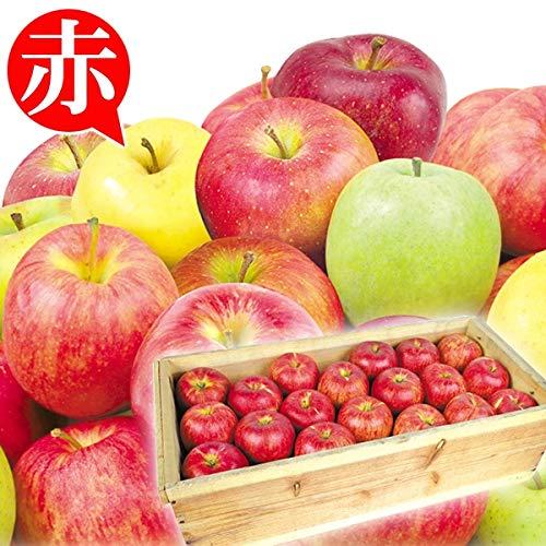 国華園 青森産 お買得 おまかせ赤りんご 約20�s 木箱 1組 りんご