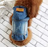 PONNMQ Cat Dog Clothes Denim Jacket Fashion Pet Puppy Dog Vest Cowboy Clothing Summer for Chihuahua Teddy Costume Jeans Dogs Coat 35,Gray,XL