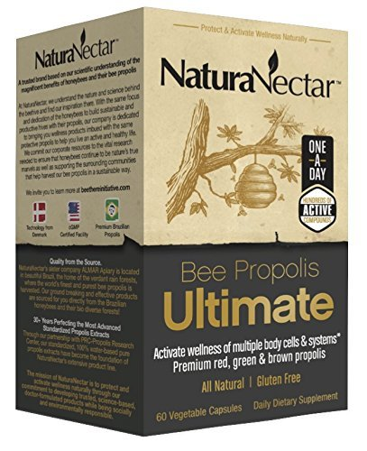 NaturaNectar Natural Bee Propolis Ultimate – Immune Support, Premium Red, Green & Brown Brazilian Propolis, Elderberry Syrup & Chaga Mushroom Alternative (60 Capsules)