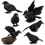 6 Pieces Halloween Black Crows Feathered Crows...