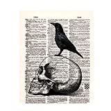 """Skull Human Anatomy Upcycled Dictionary Vintage Medical Dictionary Art Print with Bird, Home Office Wall Art Decor for Doctor Nurse, Medical Students Graduation Gift, 8""""X10"""", Unframed (L296)"""