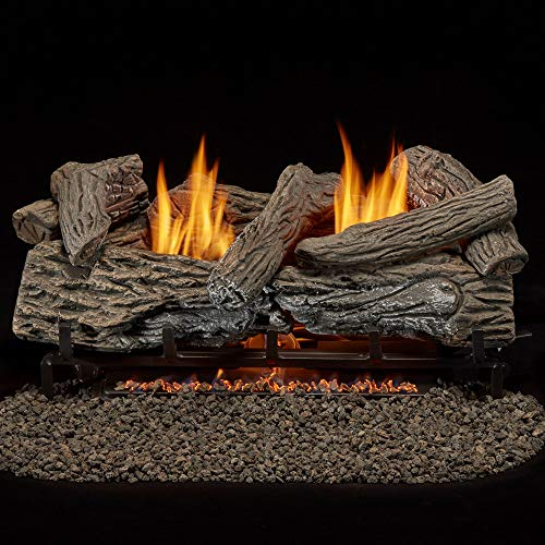 Bluegrass Living B24NR-ES1 Vent Free Natural Gas Log Set-24 Inch Traditional Oak, 32,000 BTU, Remote Control
