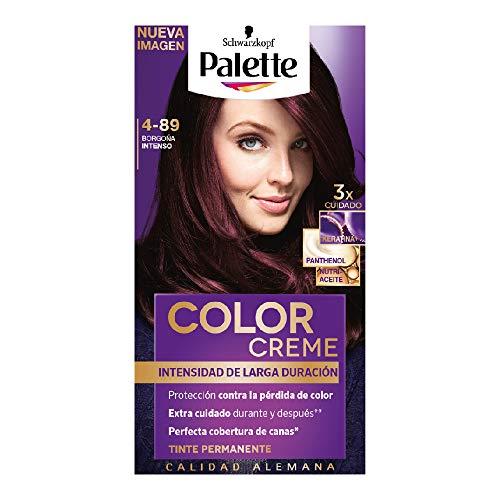 Palette Tinte para cabello color creme, borgona intenso 4-89