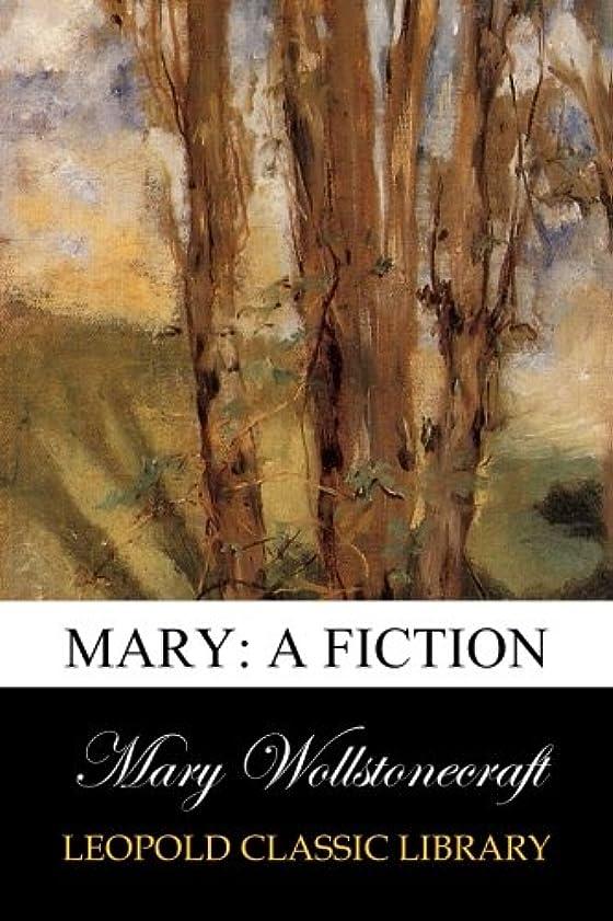 ギャングバイアスレコーダーMary: A Fiction