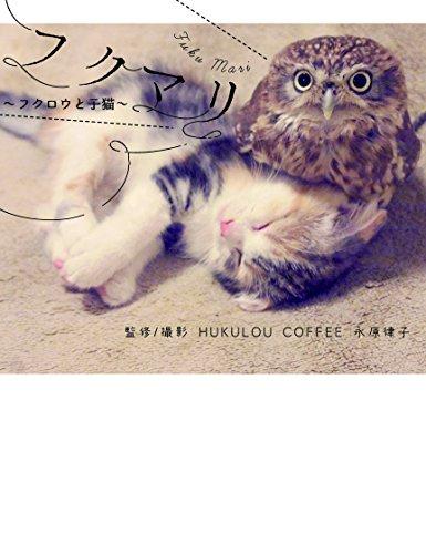 フクマリ~フクロウと子猫~