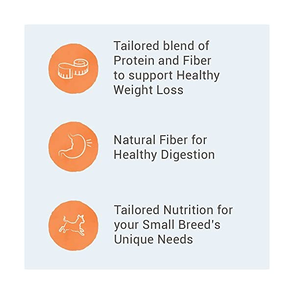 Health Shopping NUTRO WHOLESOME ESSENTIALS Adult Healthy Weight Dry Dog Food,