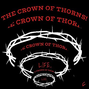 The Crown Of Thorns!