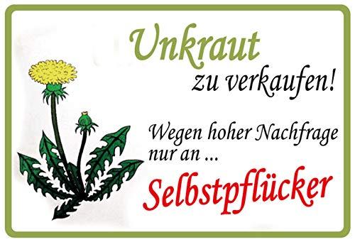 Unkraut zu verkaufen an Selbstpflücker Löwenzahn Blechschild Metallschild Schild gewölbt Metal Tin Sign 20 x 30 cm