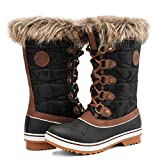 Aleader Waterproof Snow Boots for Women, Ladies Winter Lace Up Brown Booties with Fur Lined 10 B(M) US