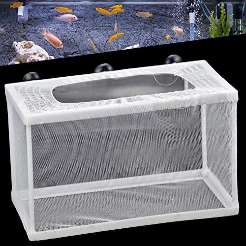 Fische Brutkasten Aquarium Aufzuchtbehälter Fisch Ablaichstation Breeding Ablaichkasten Zucht Isolation Net für Fische Garnelen Brutkasten Zuchttanks Fisch Züchter Net mit 6 Saugnapf 26 x 15 x 15 cm