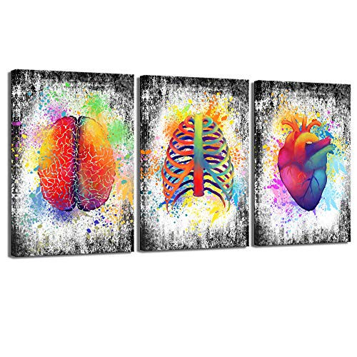 sechars - 3 Piece Canvas Wall Art Abstract Human Brain Rib Cage Heart Painting Art Prints for Medical Office Wall Decor Education Science Artwork Framed Gifts for Students Doctors (16x24inchesx3pcs)