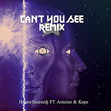 Can't You See [remix] (remix)