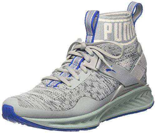 Puma Puma Unisex-Erwachsene Ignite Evoknit Outdoor Fitnessschuhe, Grau (Quarry-Asphalt-Lapis Blue), 44.5 EU