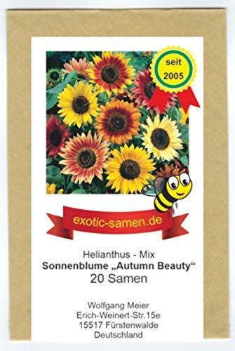 Sonnenblume - Bienenweide - Autumn Beauty - Samenmischung - 20 Samen