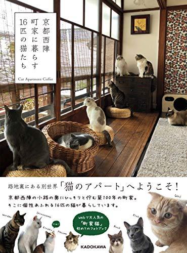 京都西陣 町家に暮らす16匹の猫たち