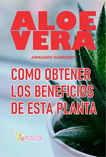 ALOE VERA: COMO OBTENER LOS BENEFICIOS DE ESTA PLANTA