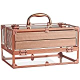 Frenessa Acrylic Makeup Train Csse Cosmetic Storage Box Portable 4-Tier Trays Jewelry Storage Organizer Makeup Display Case for Women and Girls - Rose Gold