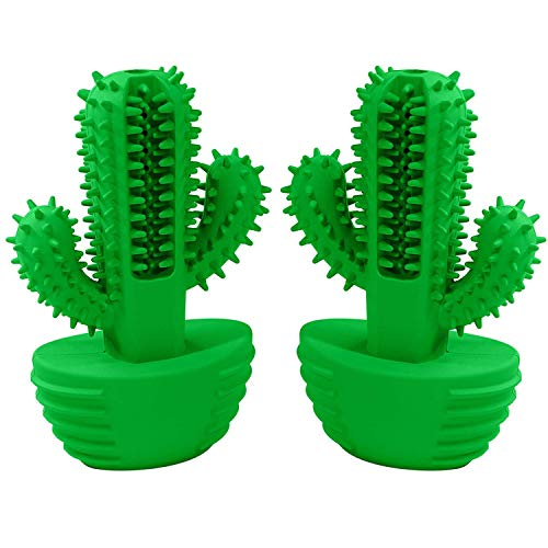 Sharper Image Pet Dog Chew Toy - Puppy Teething Chew Toys - All Breeds- Durable and Indestructible- Dental Chew Toys- Cactus Chew Toy