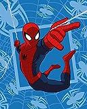 Maxi & Mini–Spiderman Plaid Decke Bett Coral 120x