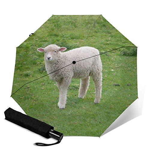 Paraguas de viaje con apertura automática, compacto, plegable, protección contra el sol y la lluvia, resistente al viento, paraguas portátil para niños, mujeres, hombres