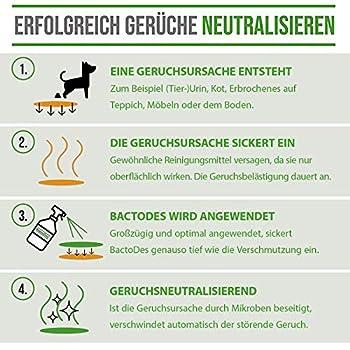 BactoDes Animal Animal Concentré Odeur Remover Le nettoyant probiotique neutralise les odeurs biologiques des animaux de compagnie, chats, chiens, etc.