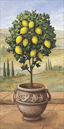 Artland Qualitätsbilder I Alu Dibond Bilder Alu Art 50 x 100 cm Botanik Bäume Obstbaum Malerei Creme A1TP Zitronenbaum