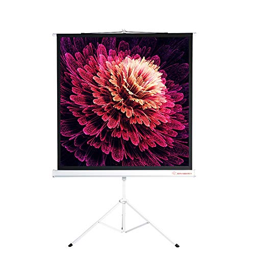 Projection Screen Projector Screen with Stand Foldable Portable Projection Screen Anti-Crease 4:3 Video Projector Best Home Theater Movie Wall or Ceiling mountable (Color : White, Size : 72inch)