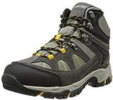Hi-Tec Men's Altitude Lite I Waterproof Hiking Boot, Charcoal/Warm Grey/Gold,11 M US