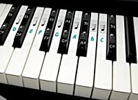 Deluxe Piano Keyboard Note Stickers for 49 / 61 / 76 / 88 Keys- Removable- For White and Black Keys Includes Note Position on Grand Staff (Blue) [並行輸入品]