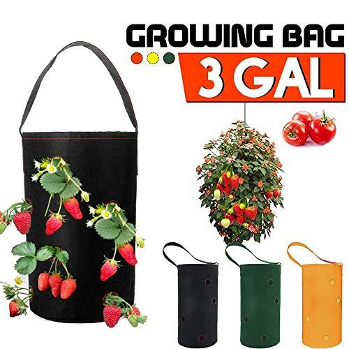 zhuangyulin6 1PC Erdbeer-Pflanzbeutel, Pflanzsystemhalter, hängender Garten Pflanzer Bettpflanzung wachsen Beutel Erdbeerpflanzen Topf, grün
