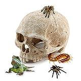 Aquarium Resin Skull, for Aquarium Decoration Reptile House Cave Family Daily Decoration
