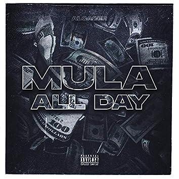Mula All Day