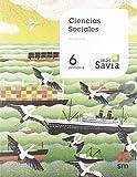 Ciencias sociales. 6 Primaria. Key Concepts. Mas Savia. Andalucía