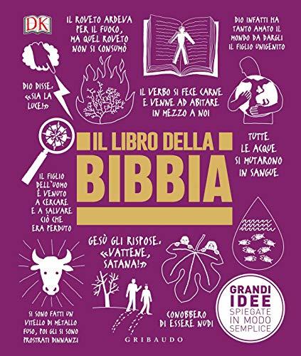 Il libro della Bibbia. Grandi idee spiegate in modo semplice