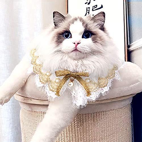 AriTan Pet Bandana Costume