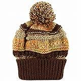 ニット帽 ニット ニットワッチ ワッチ ポンポン ボンボン ボーダー柄 ボーダー 縞 ミックス カラフル 秋冬 フリー 茶