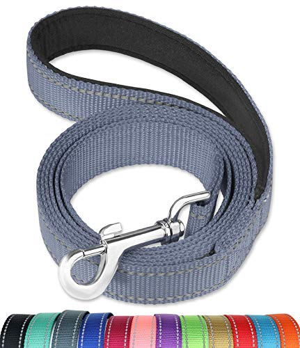FunTags 6FT Reflective Dog Leash with Soft Padded Handle for Training,Walking Lead for Large & Medium Dog,1 Inch Wide,Grey