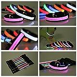 Dogsie leuchtendes LED Hundehalsband / Leuchthalsband in M,L,XL / verschiedene Farben / leuchtend oder blinkend / Halsband (L, Rot) - 3